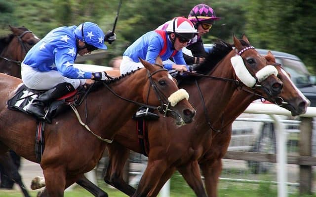 Master Racing Tipster betting service